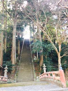 御宿に行く途中見つけた神社の写真・画像素材[862040]