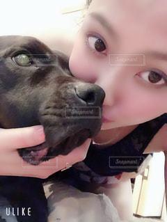 愛犬と私の写真・画像素材[2135652]