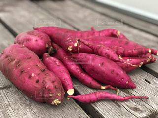 ピンクの花のグループの写真・画像素材[872978]