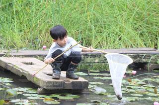 草の上に座っている小さな男の子の写真・画像素材[2294175]
