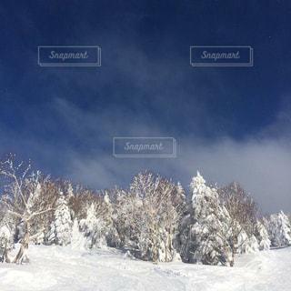 雪山 - No.863997