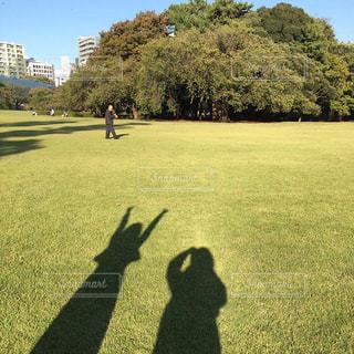 緑の草原の人 - No.864071