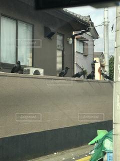 連携プレイ - No.860960