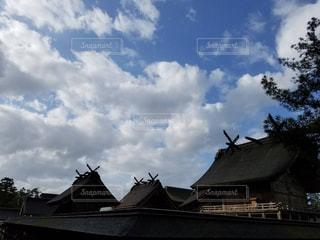 台風の後 朝の出雲大社の写真・画像素材[860763]