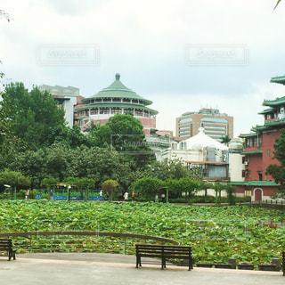 建物の隣に空の公園ベンチの写真・画像素材[865201]