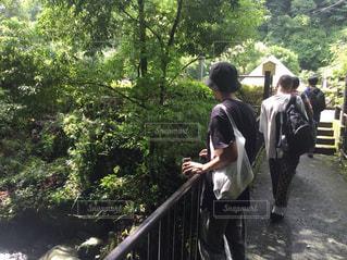 森の横に立っている人の写真・画像素材[1390977]