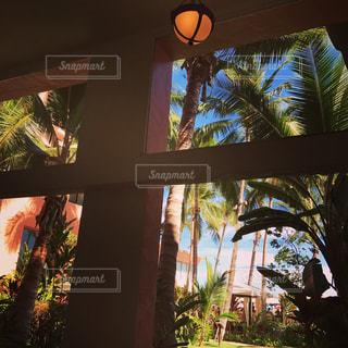 ホテルからの眺めの写真・画像素材[860621]