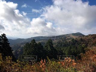 背景の山と木の写真・画像素材[862384]