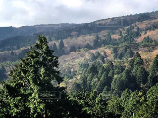 背景の山と木の写真・画像素材[862386]