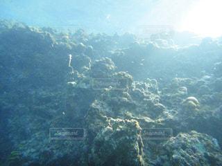 海の写真・画像素材[121497]