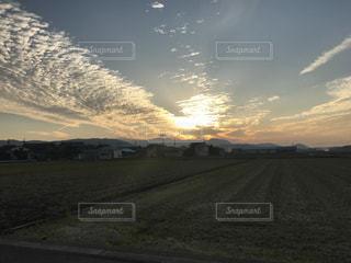 草の中に沈む夕日の写真・画像素材[863261]