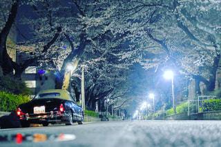 近い道を行く車のアップの写真・画像素材[1309727]