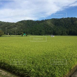 風景 - No.468408