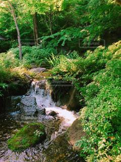 水の体の上の大きな滝の写真・画像素材[864354]