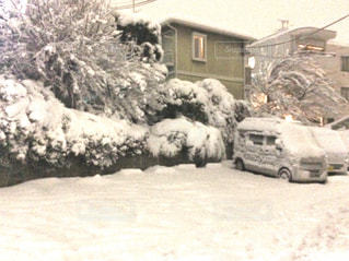 大雪の日の東京の写真・画像素材[1082000]