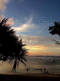 静かな海辺の写真・画像素材[873804]