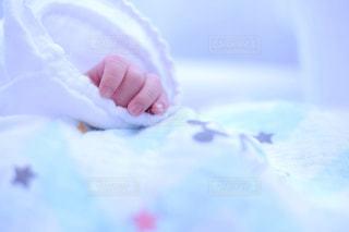赤ちゃんの手の写真・画像素材[1408942]