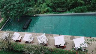 プールの写真・画像素材[865147]