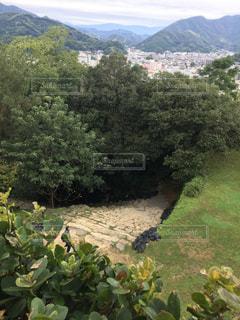 宇和島城の石段(上から)の写真・画像素材[867328]