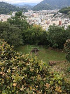 宇和島城の近くからの眺めの写真・画像素材[867331]