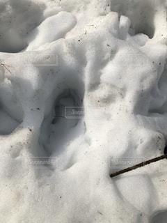 雪についた足跡の写真・画像素材[1025166]