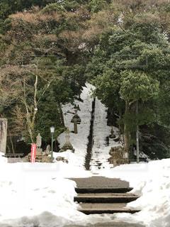 雪に覆わるた寺の階段の写真・画像素材[1025219]