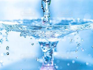 水のグラスの写真・画像素材[1239517]