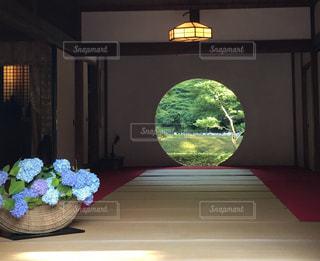 鎌倉の明月院にて - No.869305