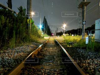 光を浴びた鉄路の写真・画像素材[870558]