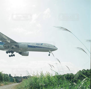 大型の飛行機が空を飛んでいます。 - No.875463
