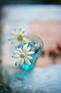 近くの花のアップ - No.888106