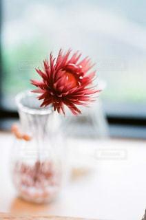 花のぼやけた画像の写真・画像素材[888109]