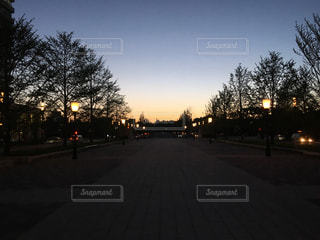 夜の写真・画像素材[448549]