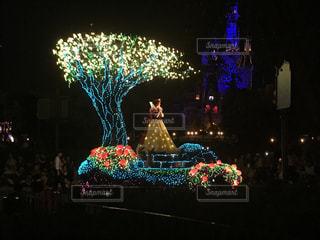 夜ライトアップされたクリスマス ツリーの写真・画像素材[869593]