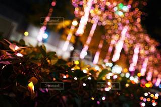 近くに夜の赤色光のアップの写真・画像素材[883601]