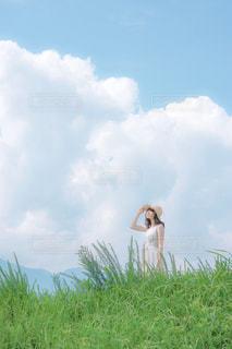 夏の香りの写真・画像素材[869783]