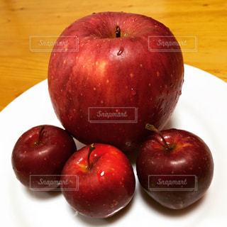 りんごの大きさくらべの写真・画像素材[974088]
