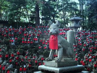 銅像の前に立っているキツネのグループの写真・画像素材[944410]