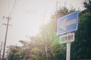 背景の木と道路標識の写真・画像素材[872329]