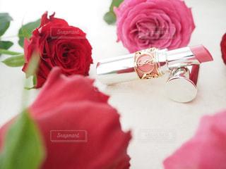 赤白とピンクの花の写真・画像素材[872504]