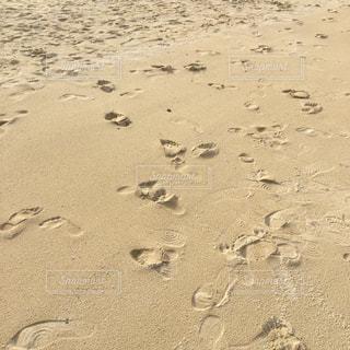 砂浜に残る足跡の写真・画像素材[872836]
