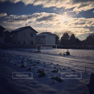 雪が降り積もった畑の朝の写真・画像素材[873254]
