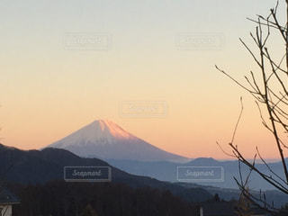 夕陽を浴びての写真・画像素材[888845]