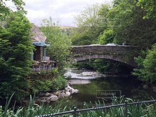 森の川に架かる橋の写真・画像素材[962170]