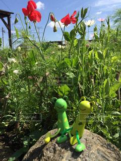 緑の植物の女神の写真・画像素材[1215648]