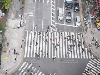 通りのクローズアップの写真・画像素材[2435522]
