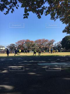 スポーツの秋ですの写真・画像素材[875416]