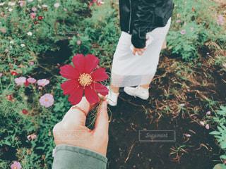 花を持っている人の写真・画像素材[983183]