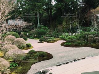 庭園の写真・画像素材[889431]