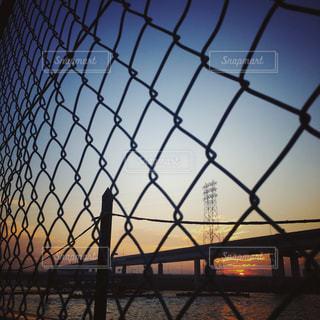 金属フェンスの写真・画像素材[895541]